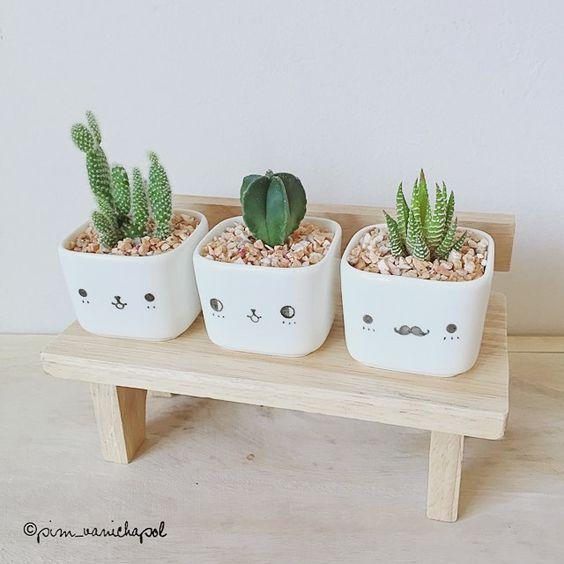 kaktusz fogyni)