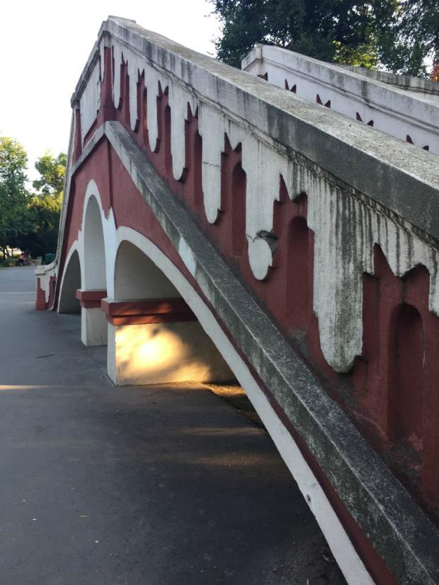 magányos híd papilloma vírus 4
