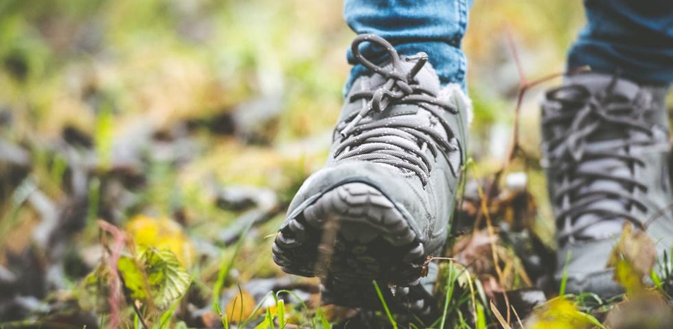 Nehéz elhinni, hogy napi 30 perc séta ezt képes tenni a..
