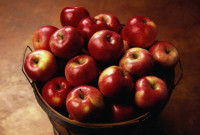 Nap képe - Egy dézsa alma