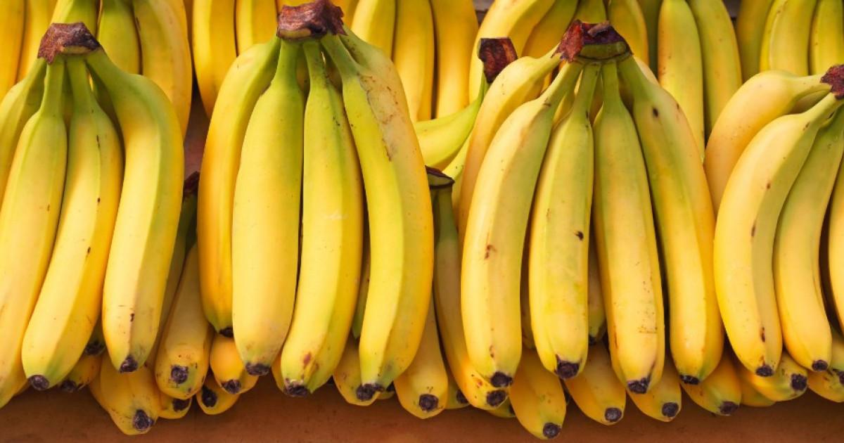 visszérrel rendelkező banán nem lehet