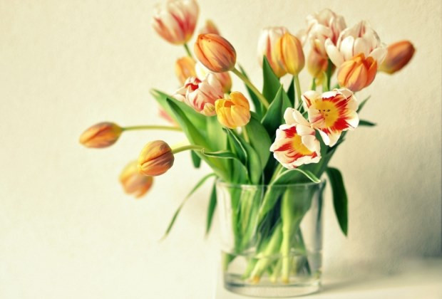 Narancsos tulipánok