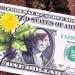 Mágnesként vonzzák a pénzt
