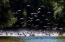 A Dráva és a Duna között, Eszék és Baranya közvetlen közelében fekszik Európa legnagyobb madárrezervátuma, a Kopácsi-rét Természetvédelmi Terület, amelyet szakvezetéssel, kishajókkal, csónakokkal és a szárazföldön is bejárhatsz. A túra az állatrezervátumot és a Tökös (Tikves) vadászkastélyt is érinti. Az egyedülálló vizes élőhelyen szabadidős horgászatra is van lehetőség.