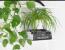 A kis dögök bizony a szobanövényeinken is kellemesen elvannak, így a föld tetejét érdemes fenyőmulccsal beborítani és a zöldeket alulról öntözni, hogy a cserepesek vízében se tudjanak élősködni.