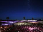 50 ezer égőt használt, hogy tündérmesévé változtassa a sivatagot - Fotók