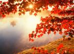Az ősz ezer arca! 12 lenyűgöző fotó, amit látnod kell