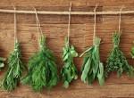 Zöldfűszerek, amik kivégzik a hasi zsírt - Hamar látszik az eredmény