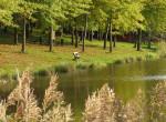 Felejtsd el a Balatont - 5 hazai tó, ahol nincs tömeg!