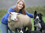 Egy bárány, aki kutyának hiszi magát
