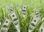Novemberi pénzhoroszkóp: A Bikákhoz csak úgy dől a pénz, a Vízöntők munkájának a gyümölcse most érik be