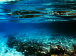 Milyen lehet az óceánbarna haj? – Ez lesz 2017 egyik kedvenc hajszíne