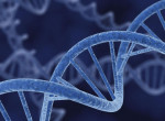 Nem a génjeink határozzák meg, milyen lesz az életünk - Hanem ez