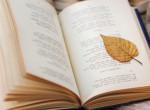Miért olyan jó verseket olvasni?