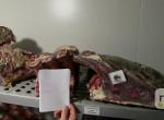 Lecsapott a NÉBIH: 1 tonna undorító húst vontak ki a forgalomból
