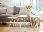 Ezek a szobanövények tisztítják a legjobban otthonod levegőjét