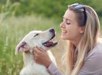 Betegségek, amiket a kutyák képesek kiszagolni - Így jeleznek