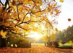 Nagy októberi horoszkóp: Rengeteg változást hozhat az ősz