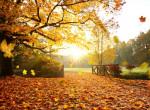 Nagy őszi előrejelzés: ilyen időjárás várható a következő szezonban