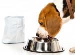 Még egy kutyatápot visszahívott ma a NÉBIH - Íme a termék adatai