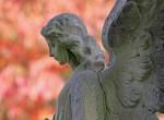 Egymondatos hétvégi angyali üzenet - Használjuk ki a pozitív energiákat