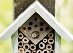 """Rovar szálló: Így készíts saját kezűleg """"hotelt"""" méheknek és pillangóknak!"""
