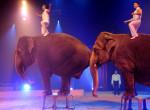 Tiszta sci-fi : Modern technológiával helyettesíti egy német cirkusz az élő állatokat