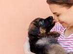 Tudod, hogy a kutyád miért nyalogat téged előszeretettel? Erre tuti nem gondoltál