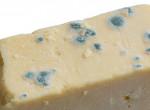 Levágod a sajtról a penészt és megeszed? Lehet, hogy életed hibáját követed el