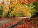 Itt az ősz: felhőszakadással közelít a hidegfront, hétvégén öltözz melegen