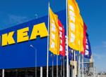 Beviheted a kutyádat az áruházba! Fontos felhívást tett közzé az IKEA