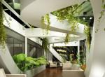 Ezek a leghatékonyabb levegőtisztító növények a NASA kutatói szerint