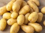 Tényleg mérgező a zöld krumpli? Nézzük, hogy mennyire igaz nagyanyáink hiedelme