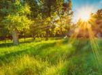Ennyi napsütés lesz júliusban? Ilyen időjárás várható a hónapban