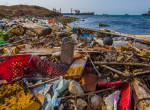Fekete húsú halakat fognak ki a Földközi-tenger szennyezett vizéből