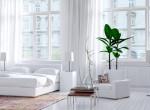 Dekoratív szobanövények, amelyek segítenek, ha nehezen aludnál el