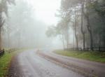 Kiadták a riasztást: ködveszélyre figyelmeztetnek, míg máshol 25 fok is lehet