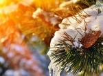 Időkép: a tél legmelegebb napja jöhet