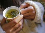 Csak természetesen! Gyógynövények, amik kiütéssel győznek az influenza és megfázás ellen!