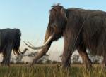 Visszatérhetnek? Biológiai élet jeleit találták egy mamut sejtjeiben