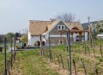 Finom borok, szenzációs vidék, elképesztő gasztronómia - Csopakon jártunk