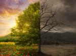 A túlvilágról visszatért emberek vallottak: 6 dolog, ami történik veled halálod után