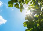Nagy nyári előrejelzés: Ilyen időjárás lesz a következő hónapokban