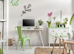 Stresszoldó szobanövények, amiket érdemes a lakásban tartani