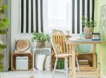 Ez az 5 legjobb szobanövény allergia ellen!