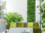 Öt csodaszép és különleges szobanövény, amikről talán nem is hallottál