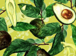 Egy igazi csodaszer: Ennyi mindenre jó az avokádó