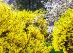 Irány a terasz, vagy a kert: országos hidegrekord után most jön a 26 fokos meleg