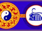 Huncut kis állat a Tűz-Patkány – mire számíthatunk decemberben a kínai asztrológia szerint?