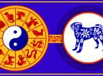 Október a Kutya hava a kínai asztrológia szerint – számíts most magadra!